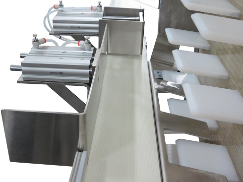 Cleat Pocket Alongside 3200 Series belted conveyors